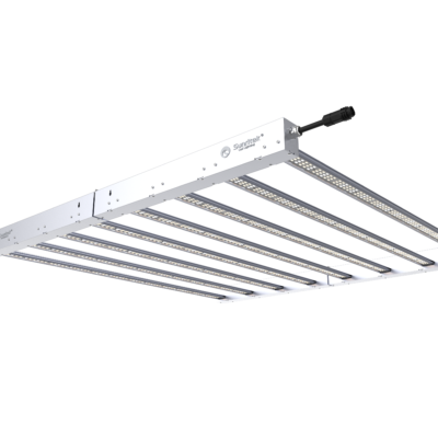 1480 Osram LEDs - LED Bar MH8 von Cannabisclub.ch